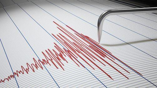Erdbebensimulation mittels Antwortspektrum und transienter Analyse