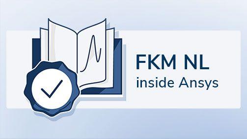 FKM NL inside Ansys